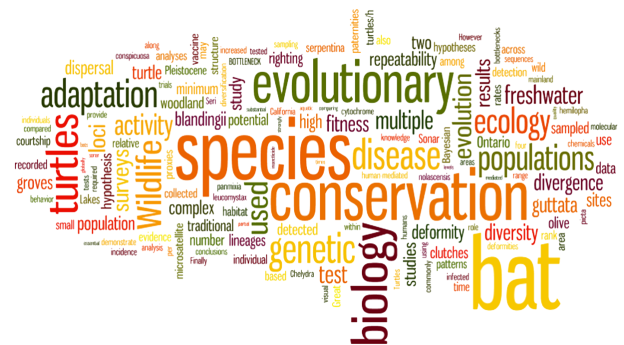 Conservation biology, molecular ecology and population dynamics